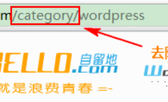 用No Category Base (WPML)插件移除WordPress网址中的category前缀